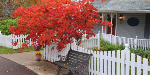 Buying A Home In Early Fall